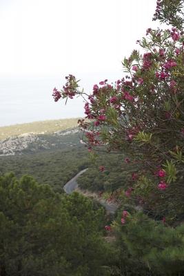 Вид на дорогу с перевала